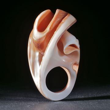 Fingerring Feuerofen-Schnecke, cypraecassis rufa