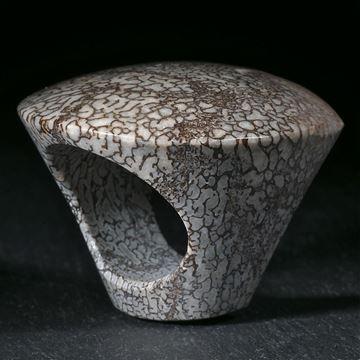 Versteinerter Saurierknochen aus den USA, handgeschliffener Ring