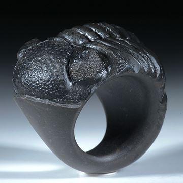 Fingerring aus einem versteinerten Trilobit (Marokko)