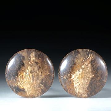 versteinertes Baumfarn, titea singularis, rundes Paar poliert ca.25x25x5mm