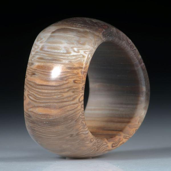 Fingerring, versteinertes Baumfarn, titea singularis, geschwungene Form poliert