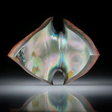 Abalone Freiform, teilweise naturbelassen ca.54x40x7mm