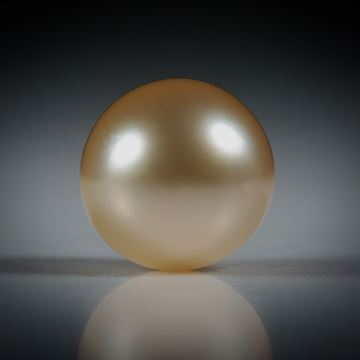 Südseeperle rund AA, ungebohrt, Durchmesser 9.25mm