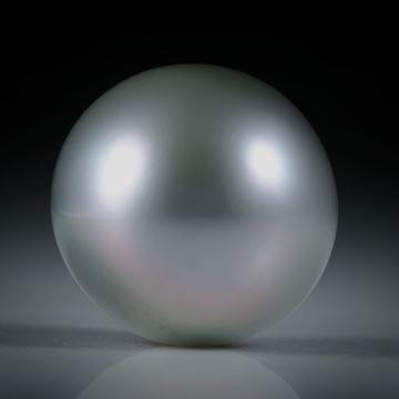 Tahitiperle Bouton AA, ungebohrt, Durchmesser 14.2mm
