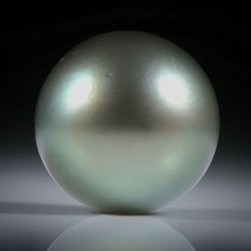 Tahitiperle rund, ungebohrt, Durchmesser 14.6mm