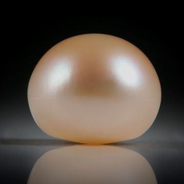 Süsswasserperle Orange, Bouton, ungebohrt, Durchmesser 14mm