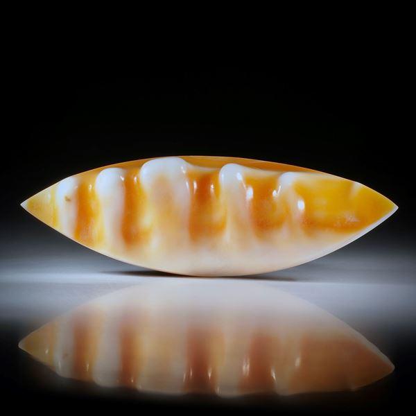 Navette aus einer Meeresschnecke (Helmet), teilweise naturbelassene Strukturen, ca.80x26x16mm