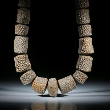 Steincollier Koralle fossil, naturbelassene Formen mit bombiert geschliffenen Seiten, Durchmesser ca.14 - 24mm, Gesamtlänge ca.44.5cm