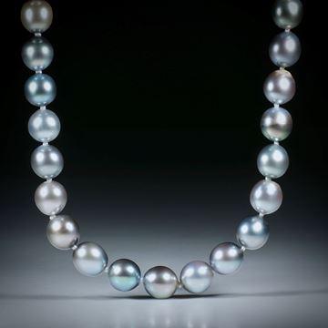 Perlencollier Tahiti dunkelgrau, Durchmesser 7-8mm, Gesamtlänge 45.5cm, geknüpft, mit Silberverschluss
