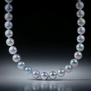 Perlencollier Akoya hellgrau, Durchmesser 7.5 - 8mm, Gesamtlänge 46cm