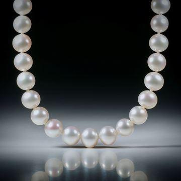 Perlencollier Süsswasser, weiss, Durchmesser 8.5mm, Gesamtlänge 45.5cm, geknüpft, mit vergoldetem Silberverschluss
