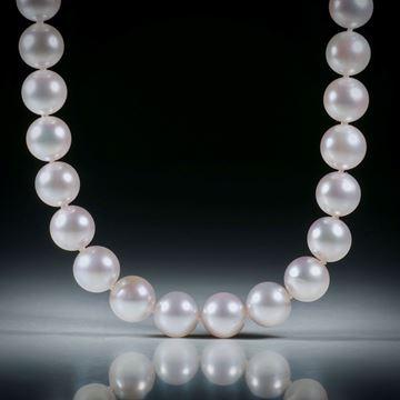 Perlencollier Akoya weiss, Durchmesser 8mm, Gesamtlänge 44.5cm, geknüpft, mit vergoldetem Silberverschluss